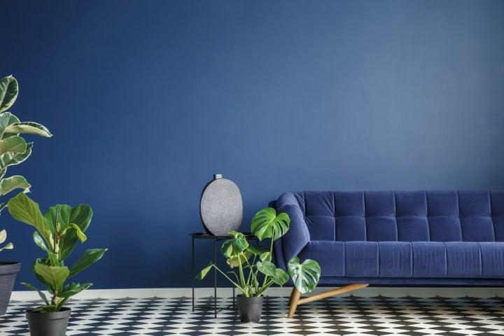Moderno plava boja zida sa plavim nameštajem.